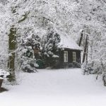 vakantiehuisje de bosuil in de sneeuw